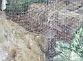 2007 Toledo Zoo 036