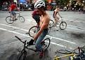 954 bike polo