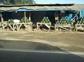 San Miguel Bulacan 026.jpg
