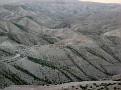 11 Judean Desert (88)