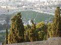 15 06 Gethsemane (23)