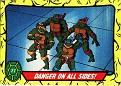 Teenage Mutant Ninja Turtles #077