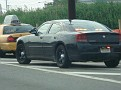Rutherford, NJ traffic stop