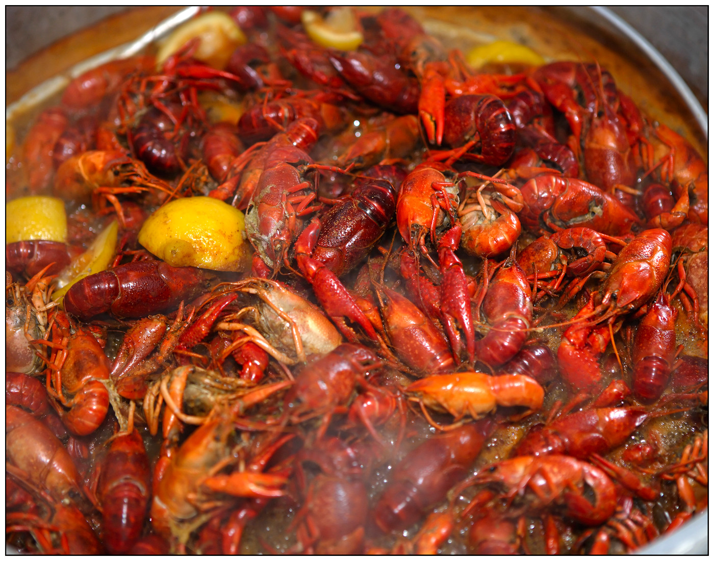 UL Crawfish Boil