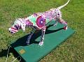2005 - DOG DAZE - PUCCI POOCHIE.jpg