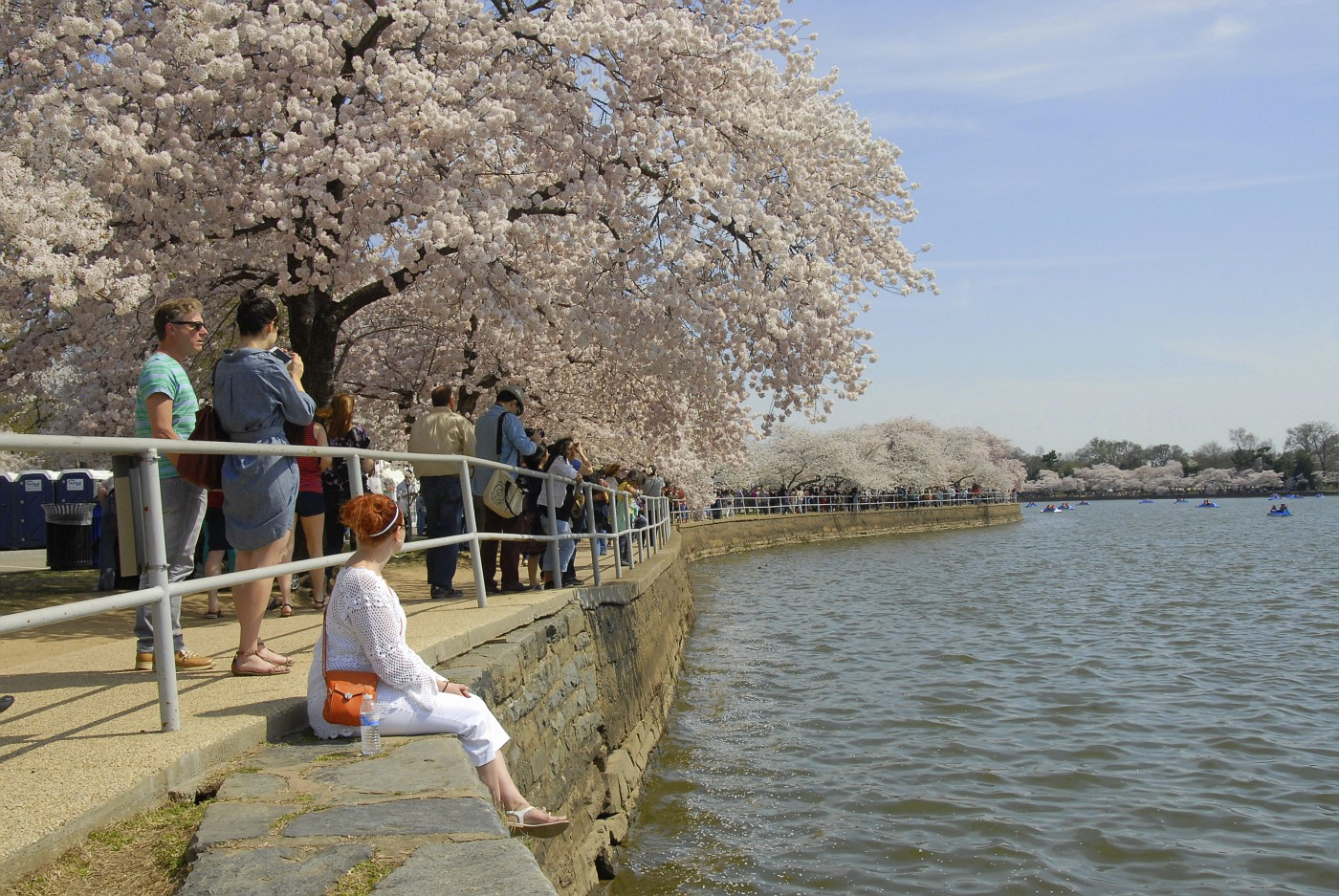 Cherry Blossom Fest 2014 048