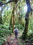 Wilson walking the trail