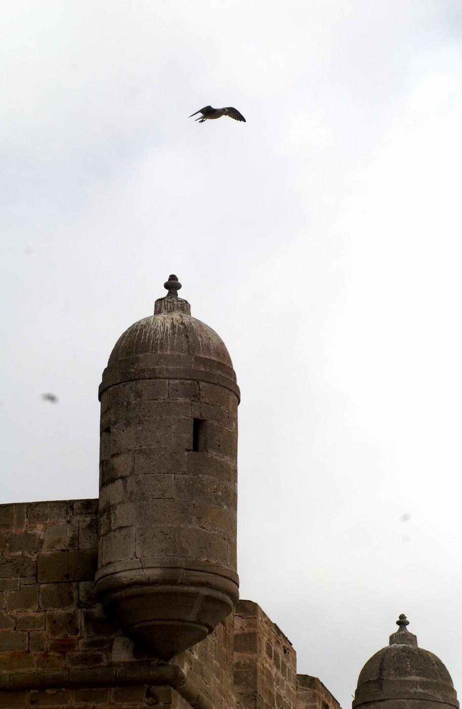 Essaouira - narozna strzelnica
