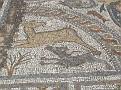 kreta cycladen 1632
