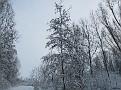 sneeuw2 004