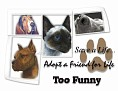 dcd-Too Funny-Adopt a Friend.jpg
