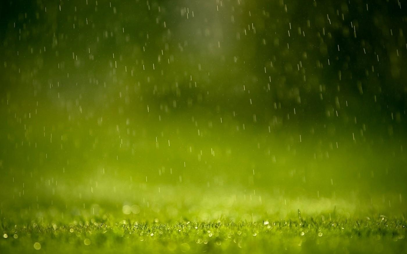 Photo: 3d-abstract-lovely-high-quality-widescreen-3d-grass-hd