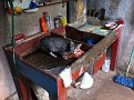 El Gato!!!  The house cat in the kitchen sink having it's dinner...  a  bag of chicken parts, I think?
