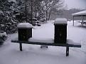 Snow Storm 1-30-2010 (19)