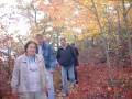 Осенью 2004 г. в каньоне Минневаска.