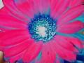 Flower Service 066a