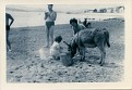 Me, with donkey, Brighton?, 1962
