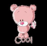 Cool - ShyTeddy
