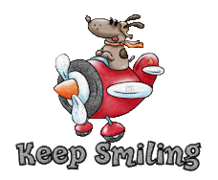 Keep Smiling - DogFlyingPlane