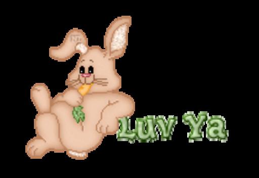 Luv Ya - BunnyWithCarrot