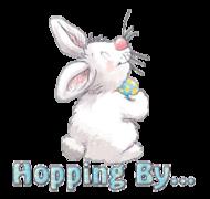 Hopping By - HippityHoppityBunny