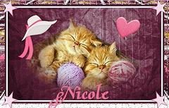 nicole-kittys-brat