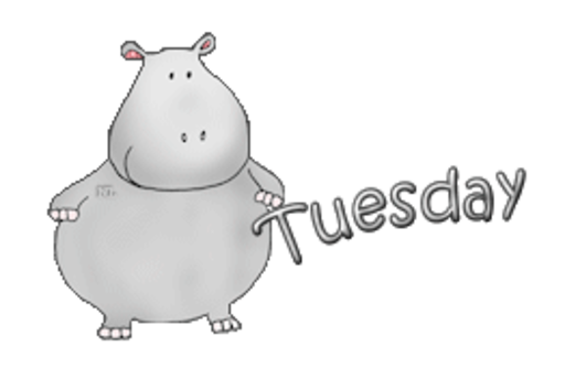 DOTW Tuesday - CuteHippo2018