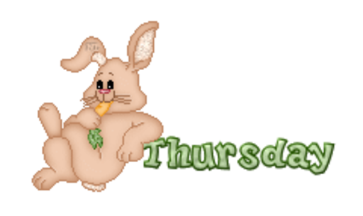 DOTW Thursday - BunnyWithCarrot