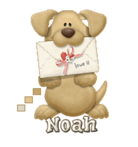 Noah - PuppyLoveULetter