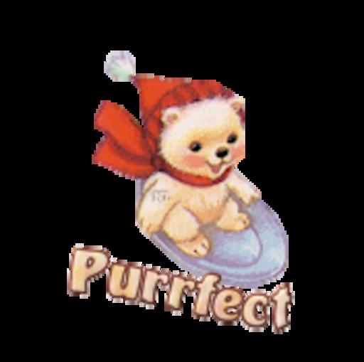 Purrfect - WinterSlides