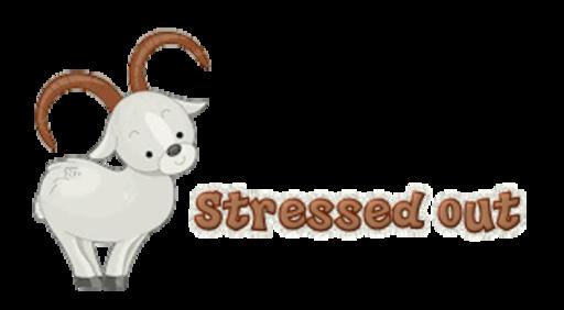 Stressed out - BighornSheep