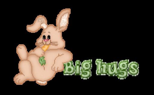 Big hugs - BunnyWithCarrot
