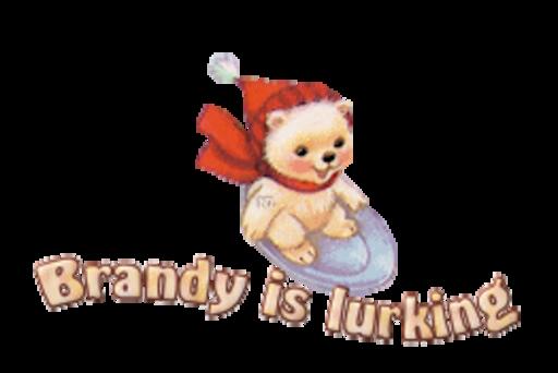 Brandy is lurking - WinterSlides