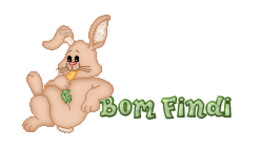 Bom Findi - BunnyWithCarrot