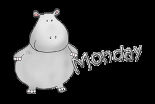 DOTW Monday - CuteHippo2018