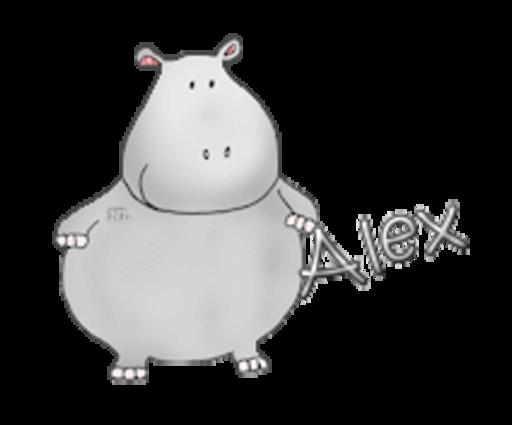 Alex - CuteHippo2018