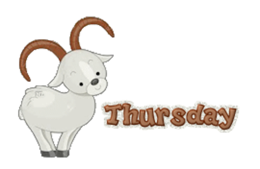 DOTW Thursday - BighornSheep