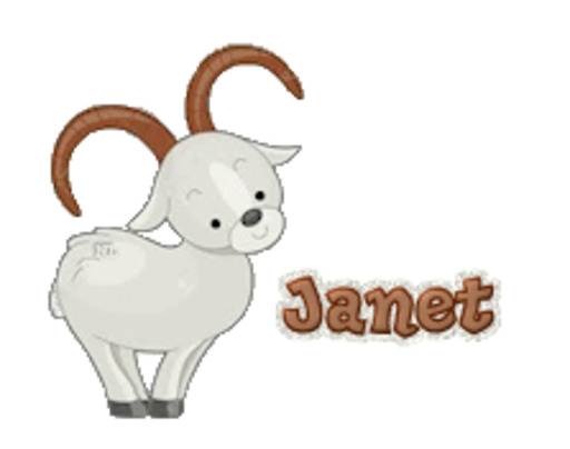 Janet - BighornSheep