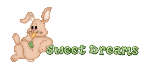 Sweet Dreams - BunnyWithCarrot