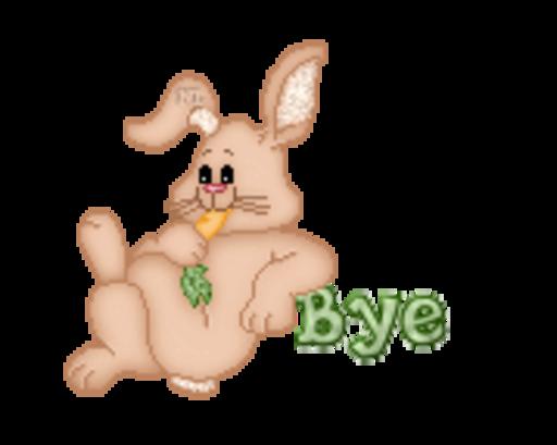 Bye - BunnyWithCarrot