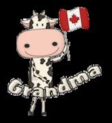 Grandma - CanadaDayCow