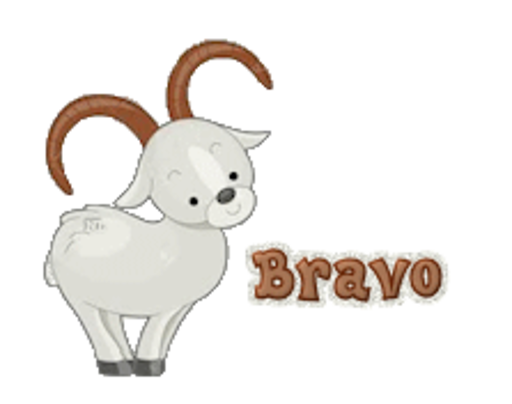 Bravo - BighornSheep