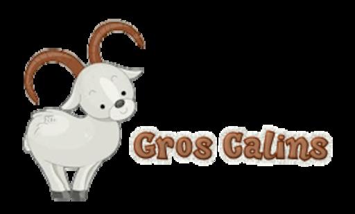 Gros Calins - BighornSheep