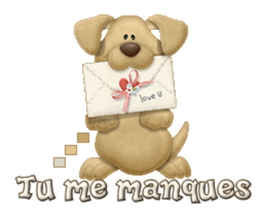 Tu me manques - PuppyLoveULetter