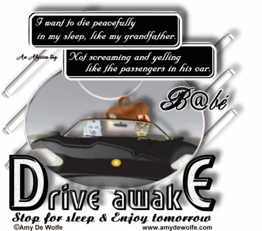 B@bé DriveAwake AmyDeW Alyssia