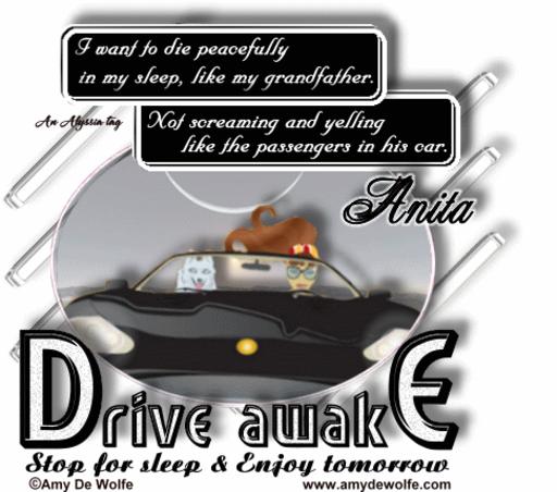 Anita DriveAwake AmyDeW Alyssia