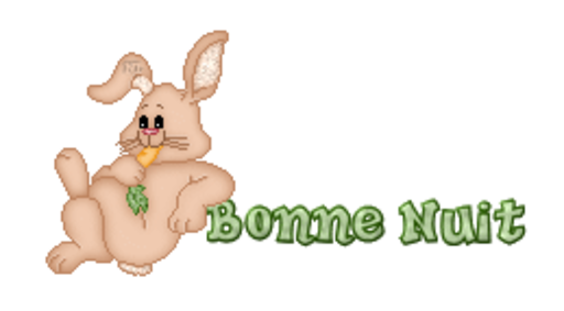 Bonne Nuit - BunnyWithCarrot