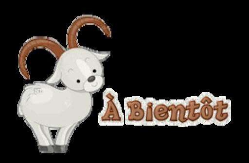 A Bientot - BighornSheep