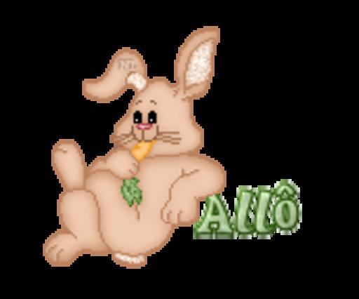 Allo - BunnyWithCarrot