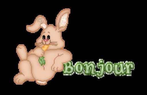 Bonjour - BunnyWithCarrot